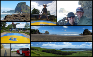 Piha to Coromandel Collage