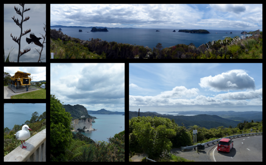 Coromandel to Matamata Collage