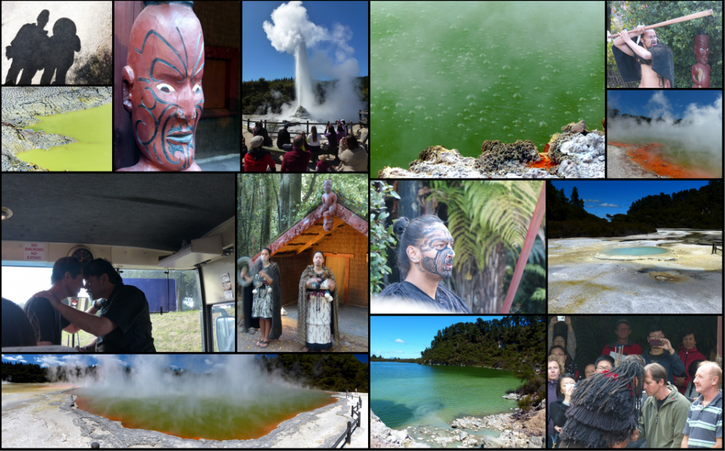 Rotorua Collage