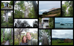 Road Trip Day 7: Aripaha to Waipoua Forest