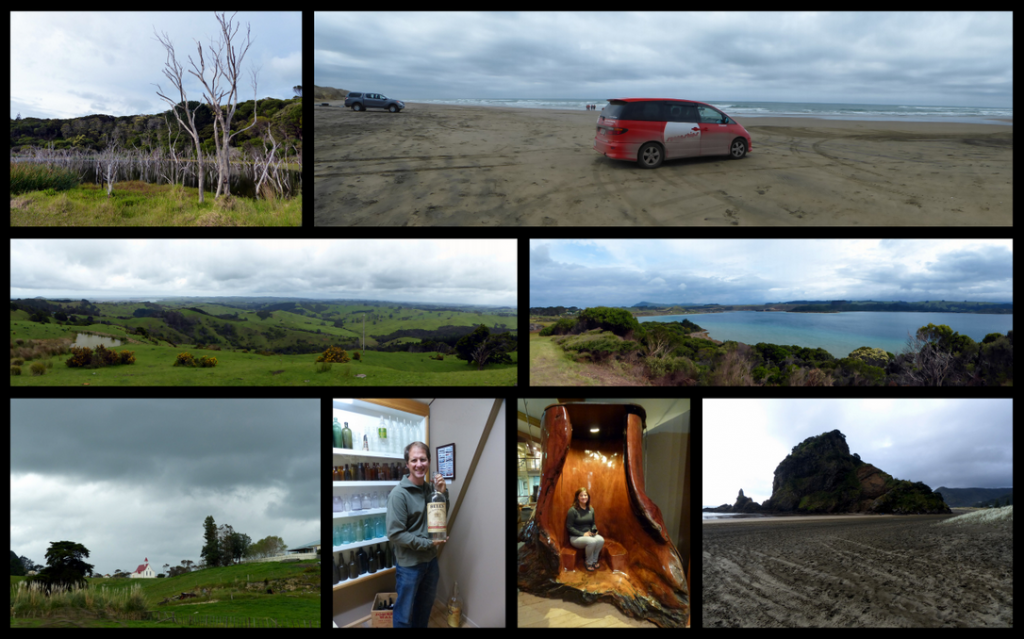 Waipoua Forest to Piha Collage
