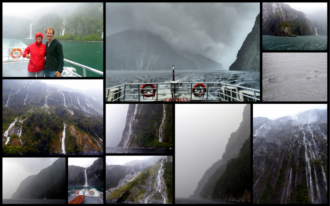 Day 41 - Milford Sound Cruise