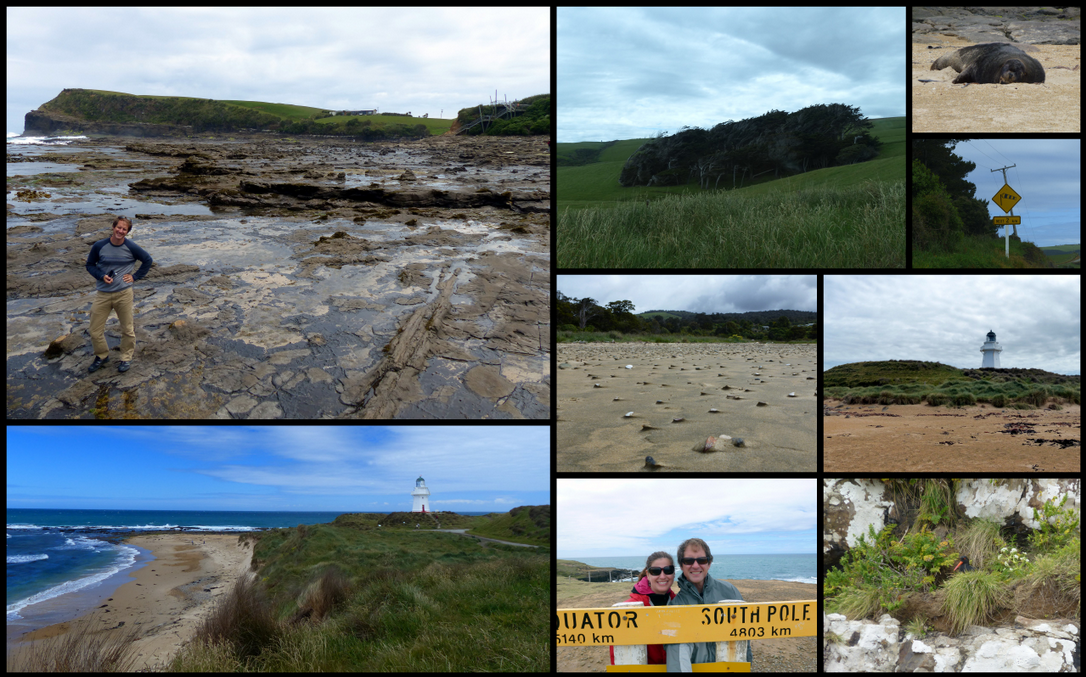 Clockwise from top left: Kyle kickin' it at Curio Bay, windswept trees at Slope Point, sea lion at Waipapa Point, windsock sign, lighthouse at Waipapa Point, Oystercatcher on her nest, Us at Slope Point, beach at Picnic Bay, Lighthouse and beach at Waipapa Point