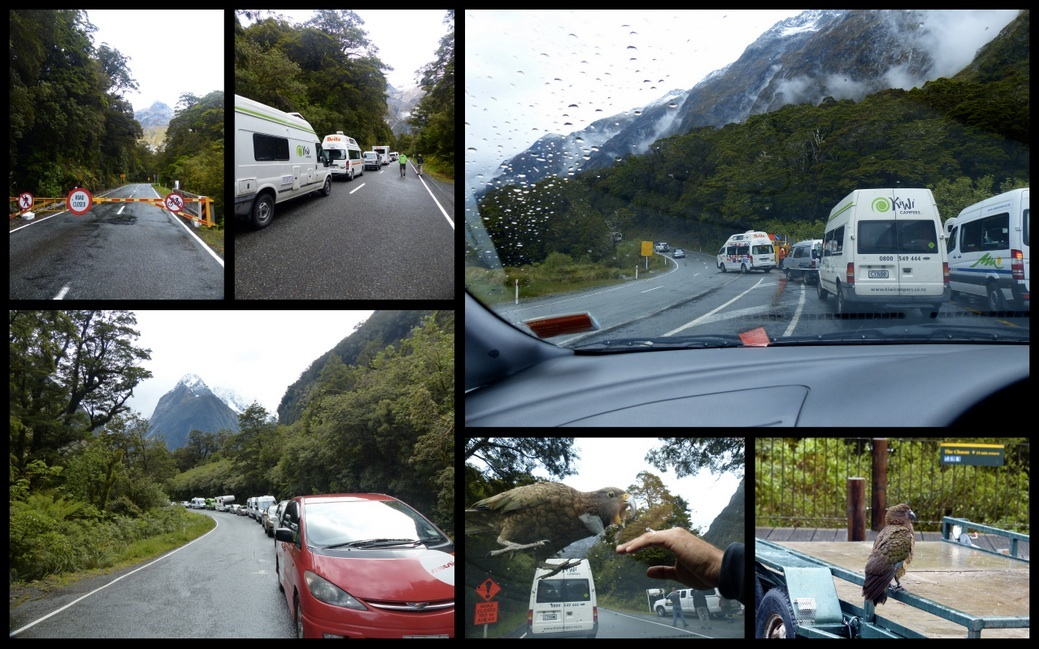 Blocked road at The Chasm, convoy waiting to go, convoy heading into avalanche zone, kea in parking lot, kea playing on our car, waiting to leave.