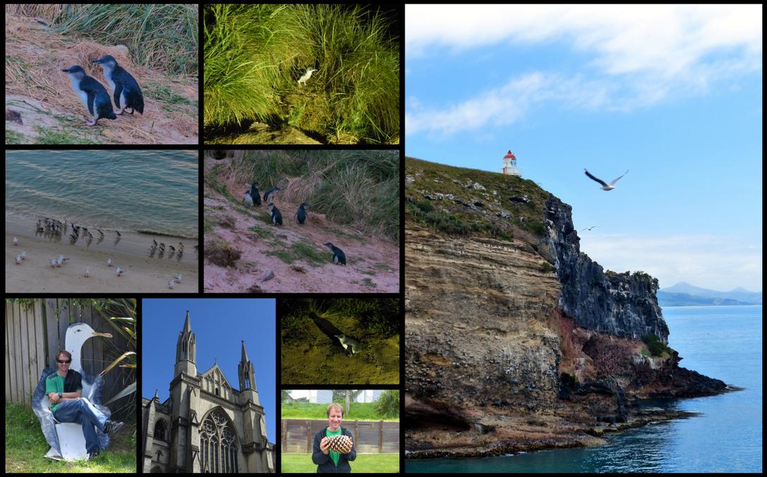 NZ Road Trip 46-47 Dunedin & Otago B