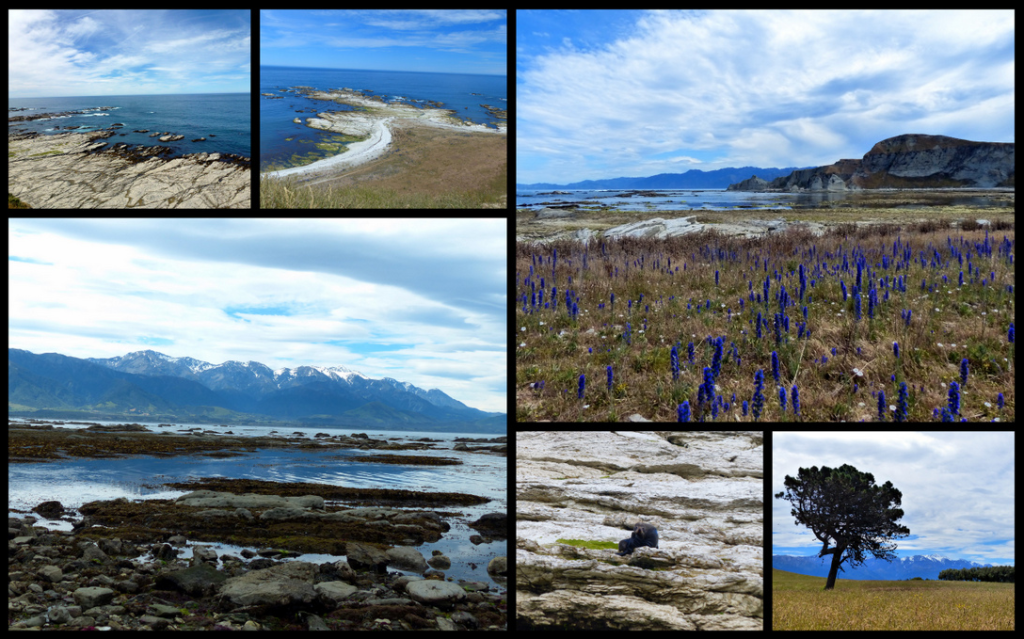 day-53-hanmer-springs-to-kaikoura