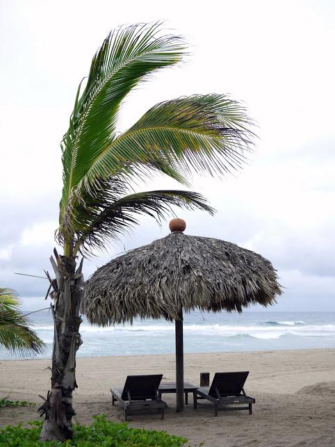 Playa Viva 1 203