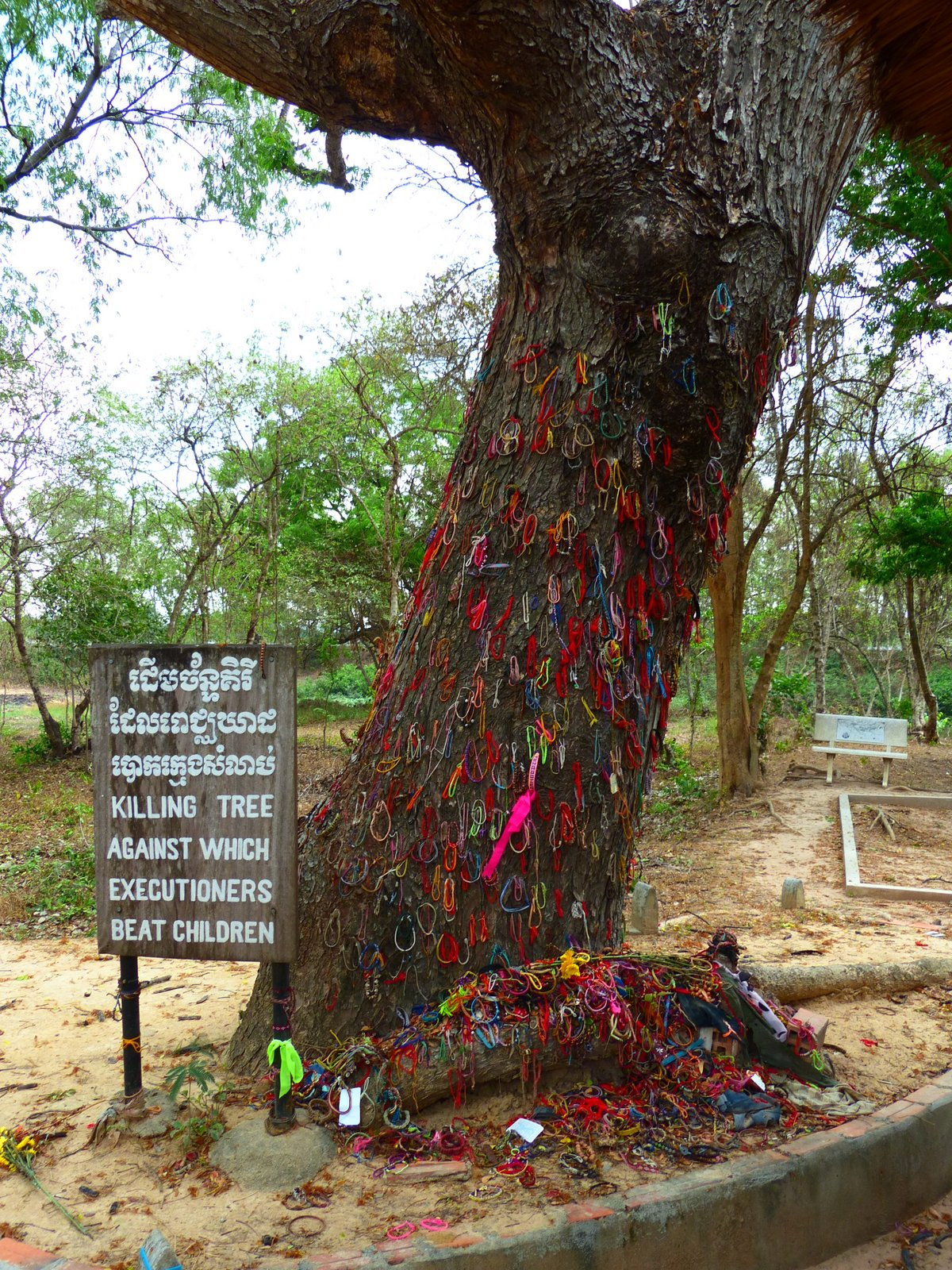 A Chankiri (or Killing) Tree at Cheoung Ek. Executioners beat small children and babies against this tree before tossing them into the mass graves with their mothers. This tree at Choeung Ek is covered with brightly colored bracelet tributes in remembrance of all the children who lost their lives here.