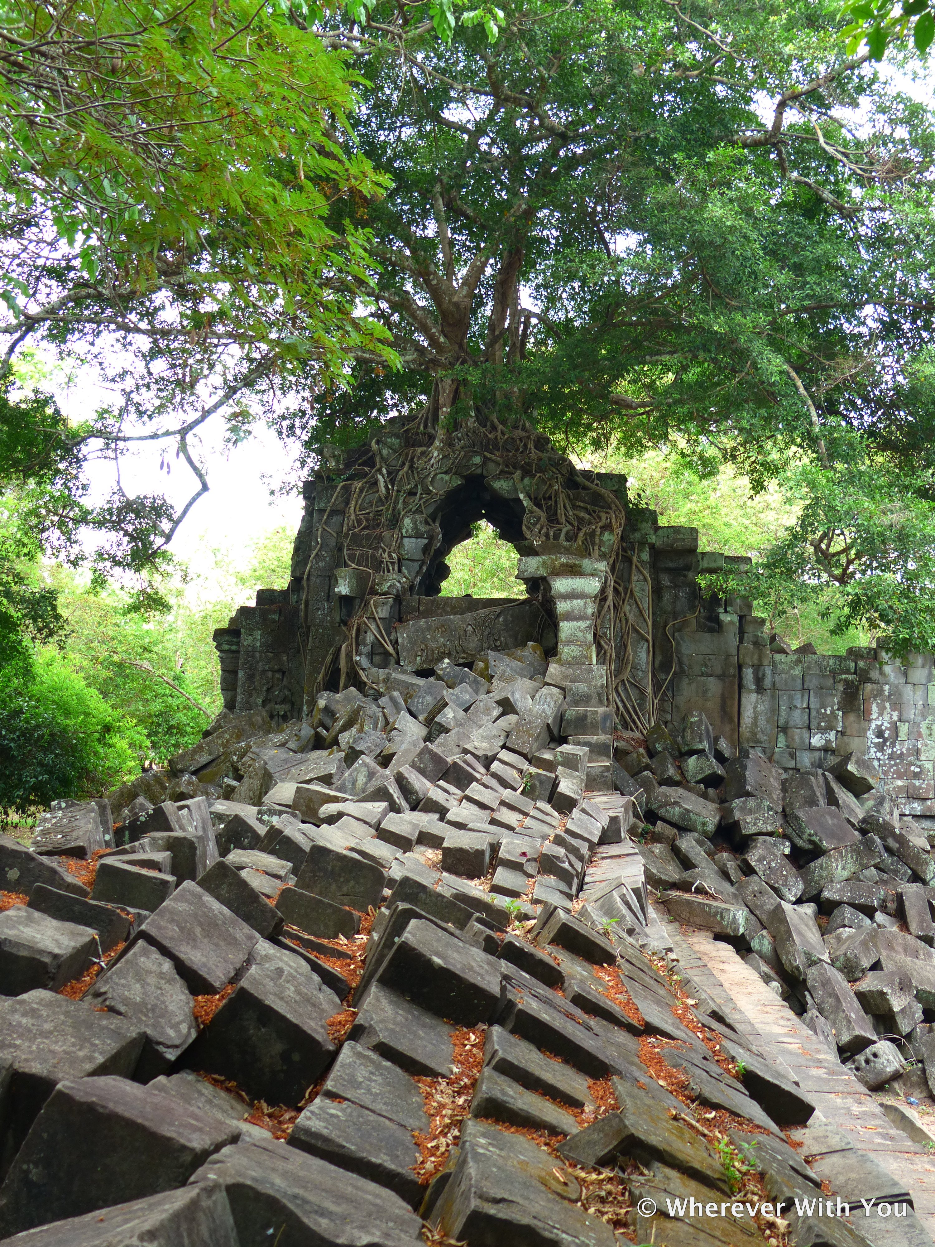 Trees have overgrown the ruined walls of Beng Mealea.