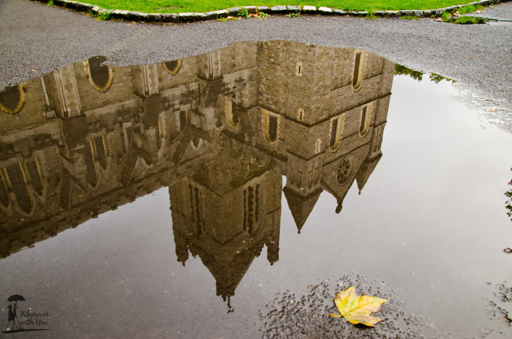 Reflection of Cathedral