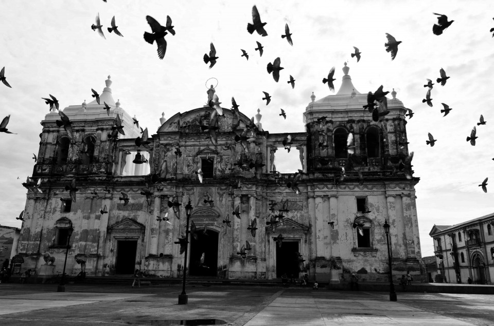 The Basilica in Leon. Pigeons were swirling one afternoon, giving it a very Hitchcockian feeling.