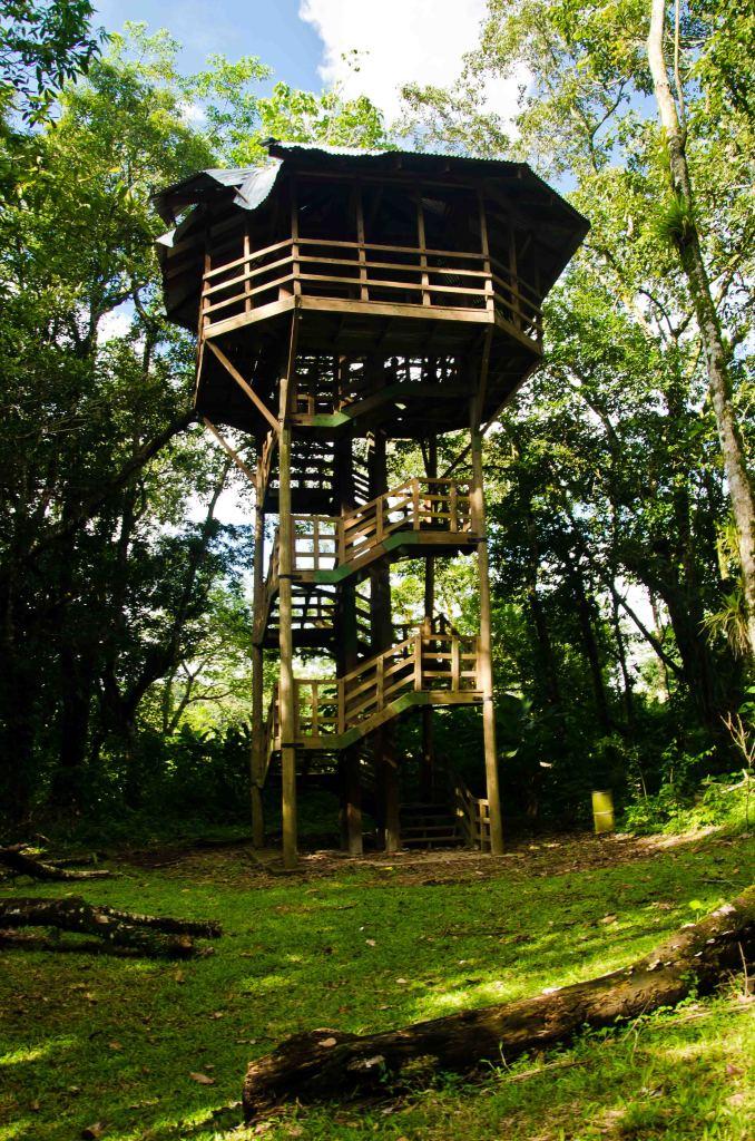 Tower at Los Naranjos