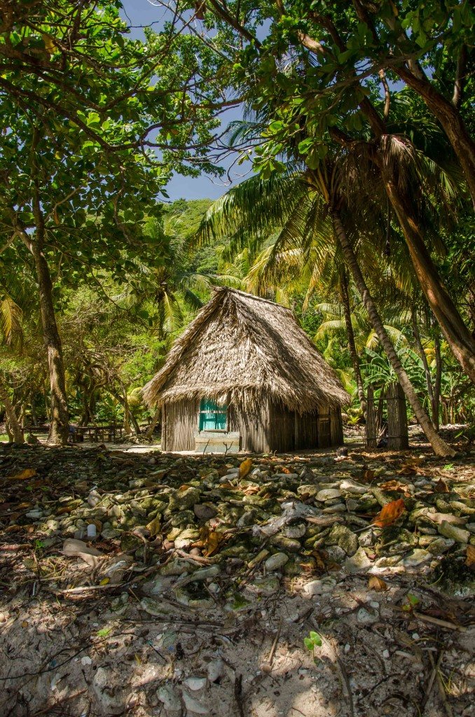 House at Cocolito Beach