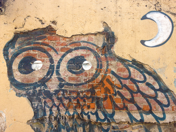 {A street artist turned the chipped away adobe down the street from us into a delightful owl}