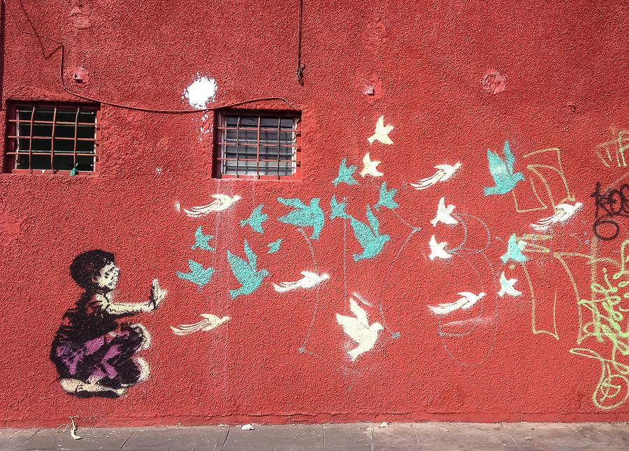 {Oaxaca has the best street art}