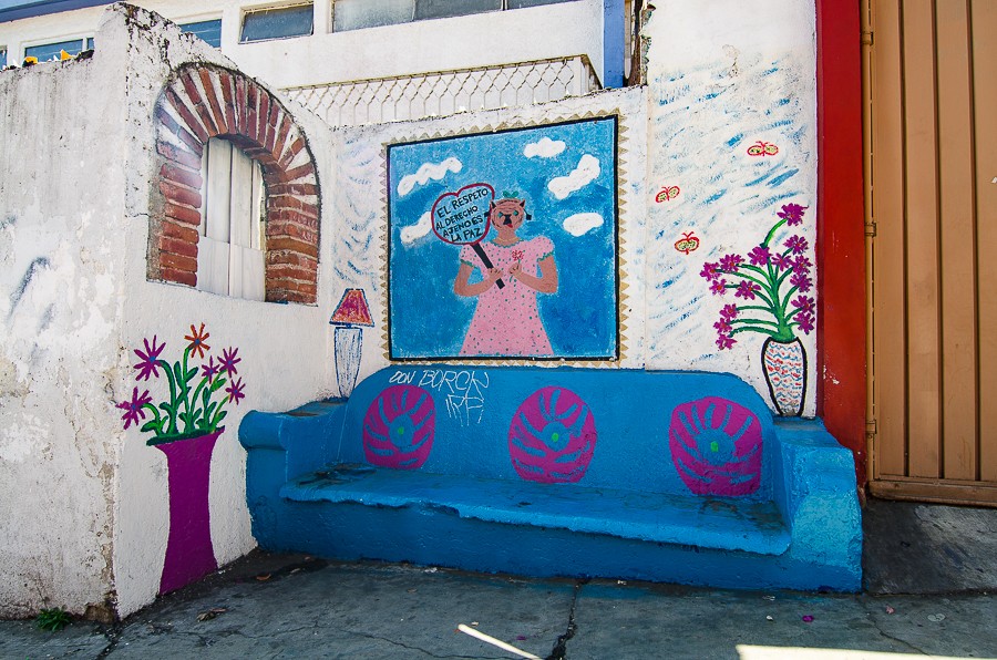 {Street Art in Oaxaca - This one says }