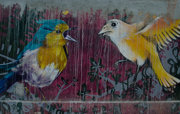{Oaxaca's street art version of Angry Birds}
