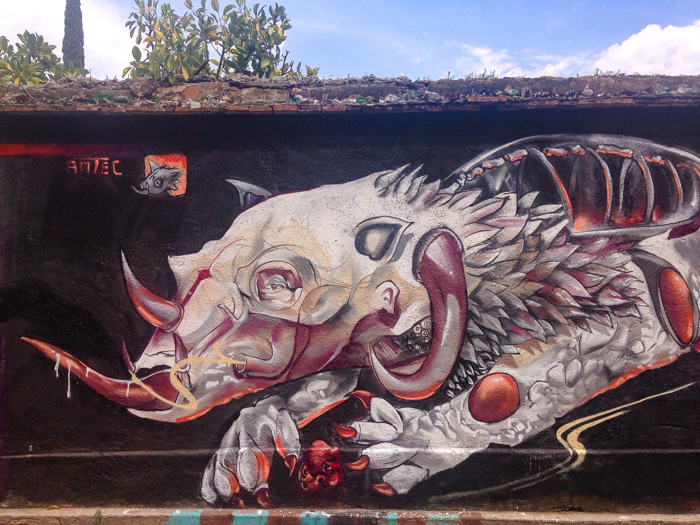 Latest street art in Xochimilco, one of the oldest neighborhoods in Oaxaca.