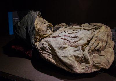 Las Momias de Guanajuato ~ The Mummies of Guanajuato