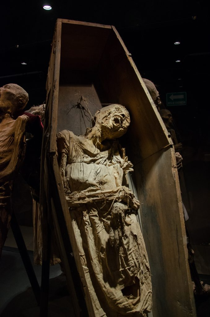 {La China is the only mummy to still be displayed in her original coffin. Her features indicate she is of Asian descent and was probably in Guanajuato because her family had immigrated to Mexico in the late 19th century.}