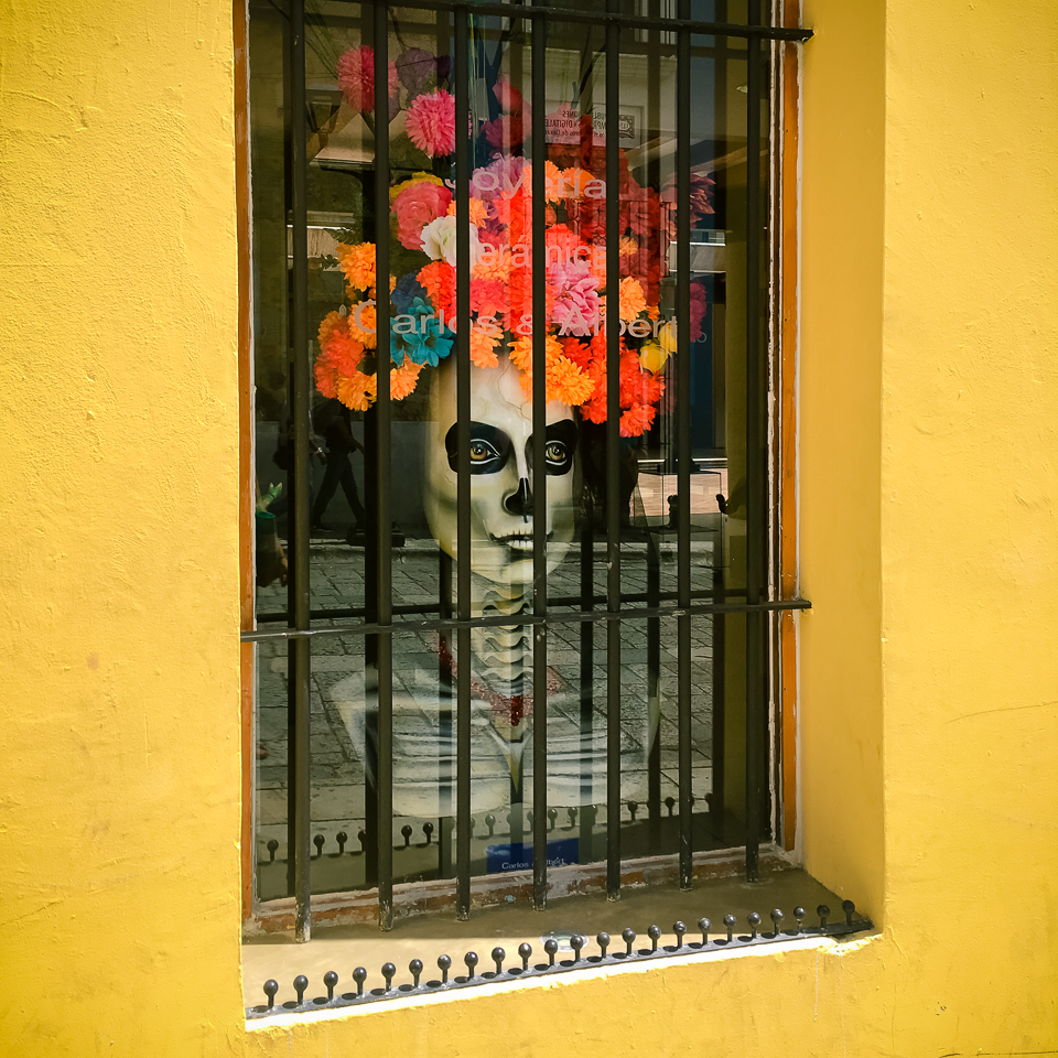 {Beautiful Day of the Dead display in one of the local galleries.}
